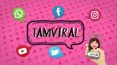 TamViral: Top 10 de los vídeos más virales